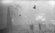 Hiểm họa sau màn sương mù London thời công nghiệp