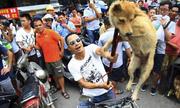Lễ hội thịt chó ở Trung Quốc có nguy cơ bị cấm