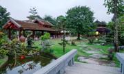 'Biệt phủ triệu đô trồng cây xanh giữa lòng Hà Nội' gây sốt mạng XH