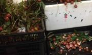 Khách ăn thử trái cây vứt vỏ đầy siêu thị