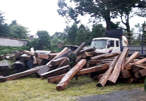 Số gỗ lậu bị bắt giữ. Ảnh: Nhật Hạ