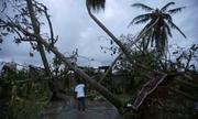 Gần 500 người chết ở Haiti vì bão 'quái vật'