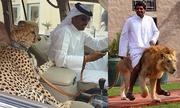 Những hình ảnh bá đạo chỉ có ở Dubai