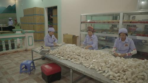 Những người thợ đang chăm chỉ đóng gói bánh. Ảnh: bizmedia