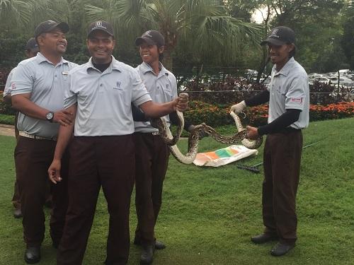 tran-dai-hai-met-quay-roi-giai-golf-o-malaysia-1