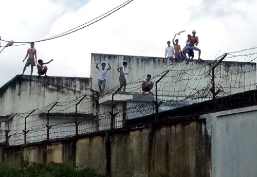 Nhiều học viên leo lên nóc nhà, tường rào hò hét. Ảnh: Phước Tuấn