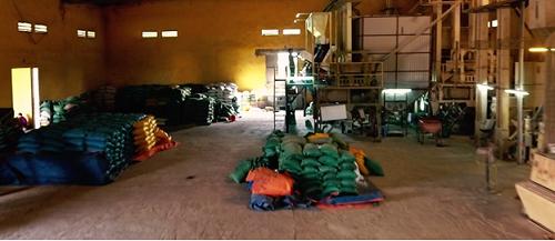 Trung bình mỗi năm, gạo Hương Giang xuất ra thị trường khoảng 1.700 tấn các loại, phân phối đi khắp các tỉnh miền Bắc. Ảnh: Bizmedia