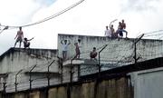 Chủ mưu những vụ trốn trại cai nghiện lĩnh án thế nào?