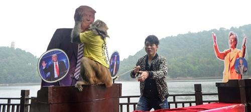 Gela, con khỉ trong công viên sinh thái Hồ Thạch Yến ở tỉnh Hồ Nam, Trung Quốc