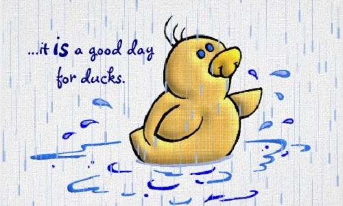 nham-lan-ve-tu-duck-va-dog
