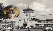 Cô gái đánh hạ cọp dữ ngày lễ mở chợ Bến Thành hot trên mạng XH