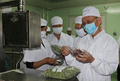 Hệ thống sấy bơm nhiệt và vi sóng đã được thử nghiệm trên các sản phẩm của mộtcông ty ở Thái Bình và được đánh giá cao với ưu điểm bảo tồn được các vitamin, hợp chất hữu có ích của sản phẩm tươi.Ảnh: Lê Hoàn.