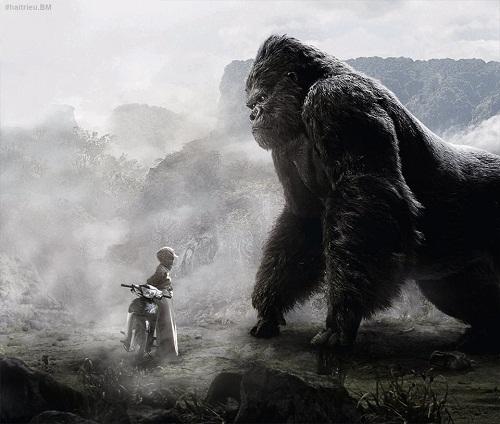 Trận đối đầu gây cấn giữa Kong và ninja Việt.