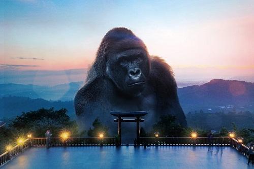 Lạc trôi lên đỉnh núi Vũng Chua.
