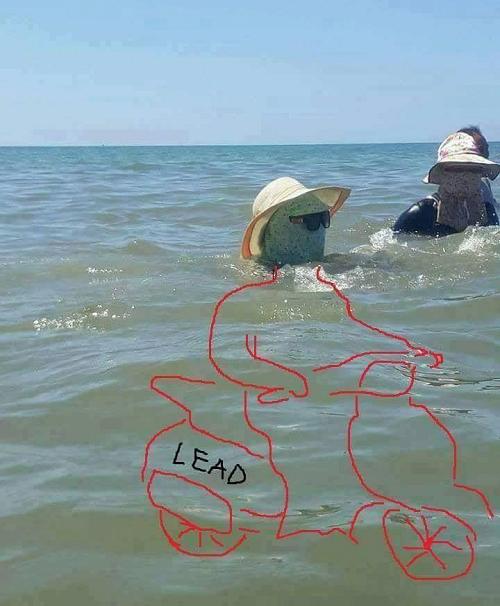 Khi ninja xuống biển.