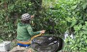 Video nữ cao thủ giật cá trê liên tục trên sông Sài Gòn xem nhiều tuần qua