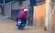 Hai cẩu tặc dùng súng điện trộm chó trong 8 giây ở Hà Nội