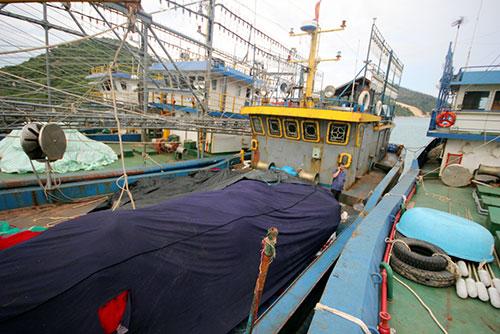 Tàu vỏ thép ngư dân Bình Định hư hỏng neo đậu ở cảng cá Đề Gi nhiều tháng nay. Ảnh: Đắc Thành