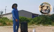 Nạn dùng loa thùng bẫy chim én ở Hà Tĩnh