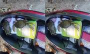 Giải pháp chống đạo tặc móc trộm cốp xe