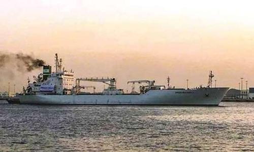 Tàu hàng Thổ Nhĩ Kỳ cập cảng Hamad, Qatar, hồi đầu tháng. Ảnh: Gulf News.